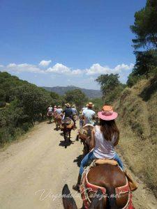 camino-Virgen-de-la-Cabeza-en-mulo