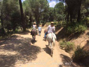 camino en mulo Virgen de la Cabeza 6