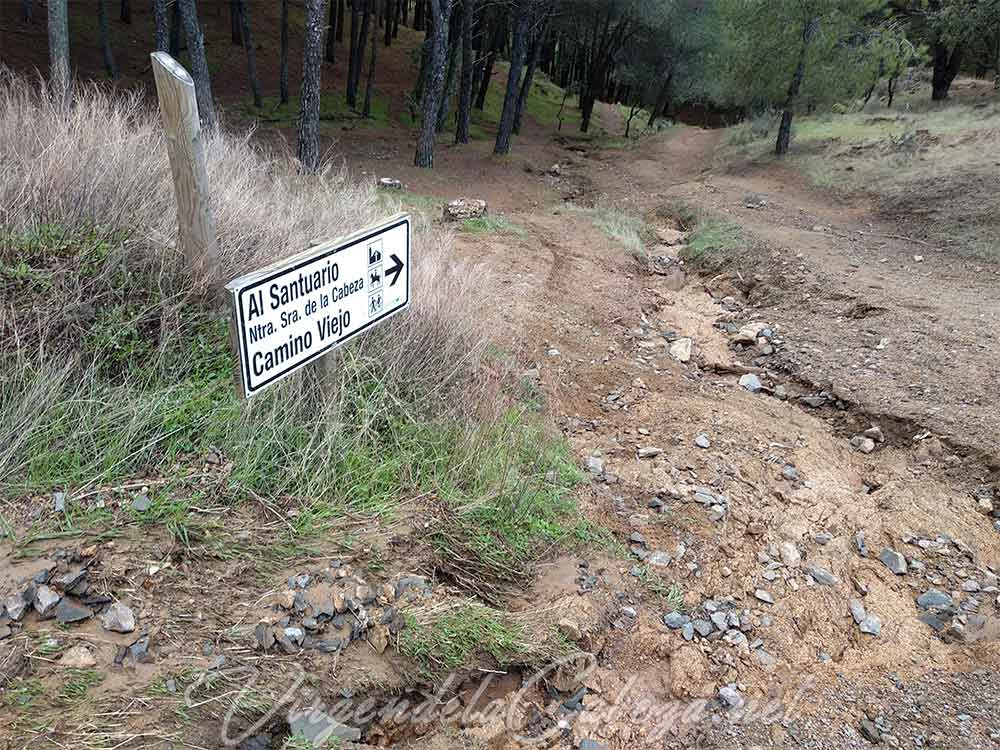 Pinares Lugar Nuevo
